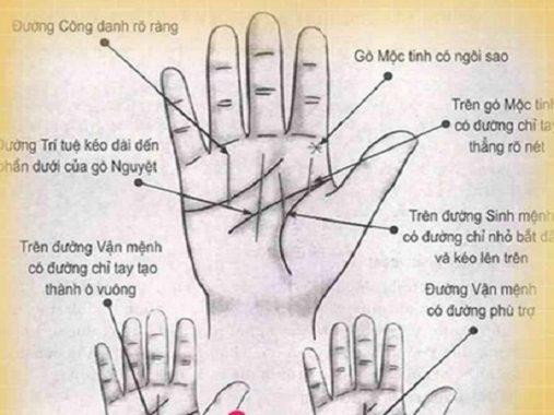 Xem chỉ tay nữ – Đoán vận mệnh của phụ nữ qua đường chỉ tay