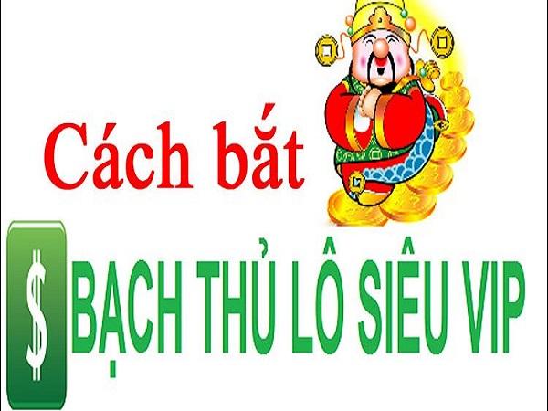 cach-bat-bach-thu-lo