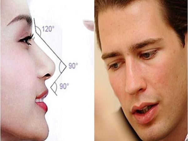 Xem tướng mũi trâu dự đoán cuộc đời, số mệnh