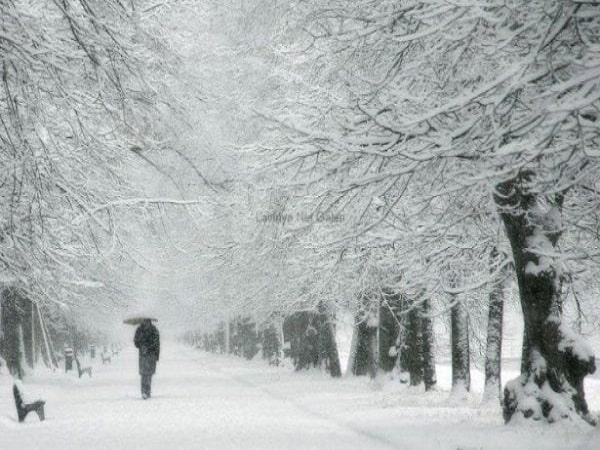 Nằm mơ thấy tuyết đánh lô tô miền bắc