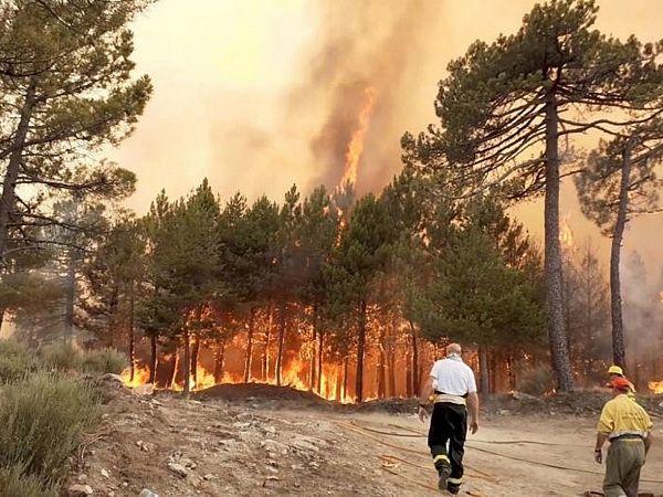 Mơ thấy hỏa hoạn đánh con gì đổi đời, là điềm báo gì?